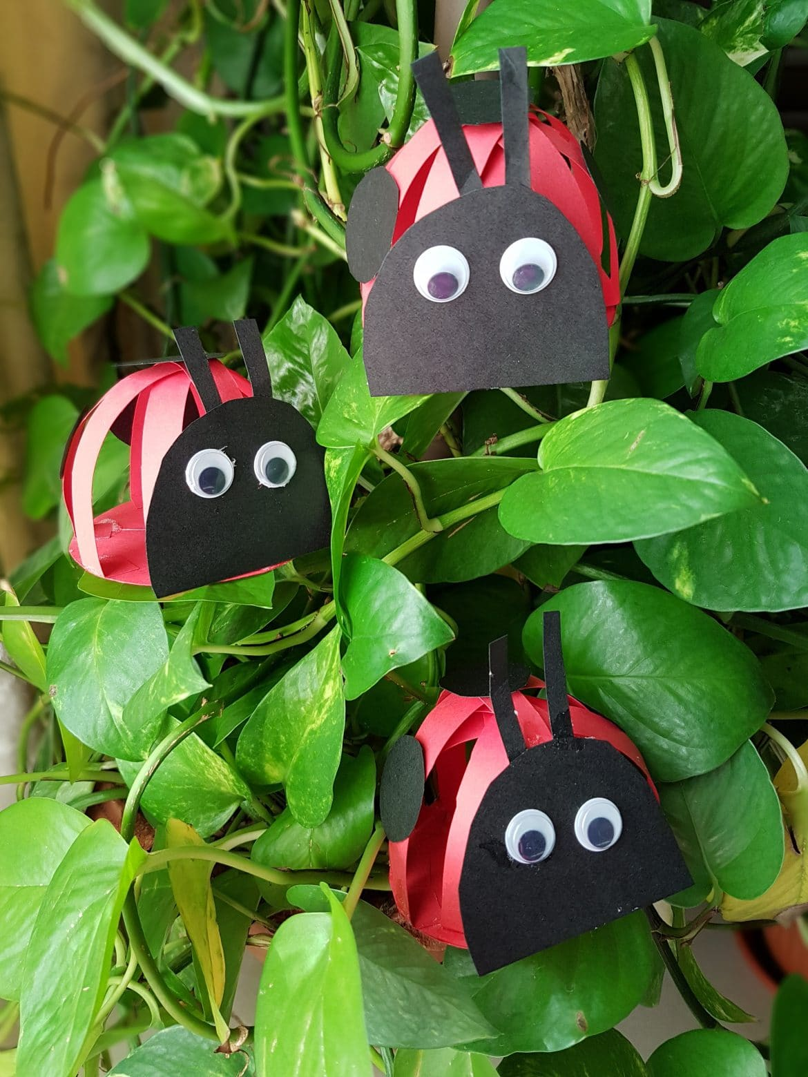 Super Easy Paper Grouchy Ladybugs Craft
