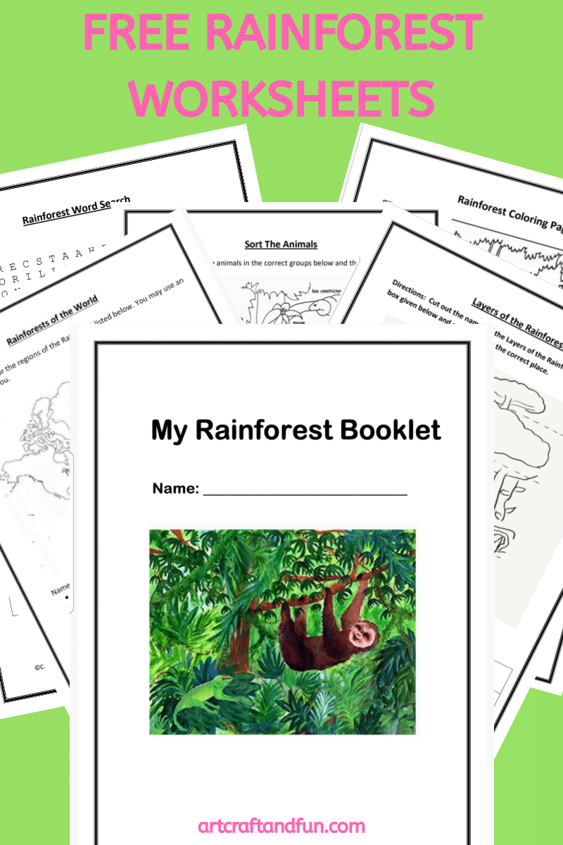 Free Printable Rainforest Worksheets