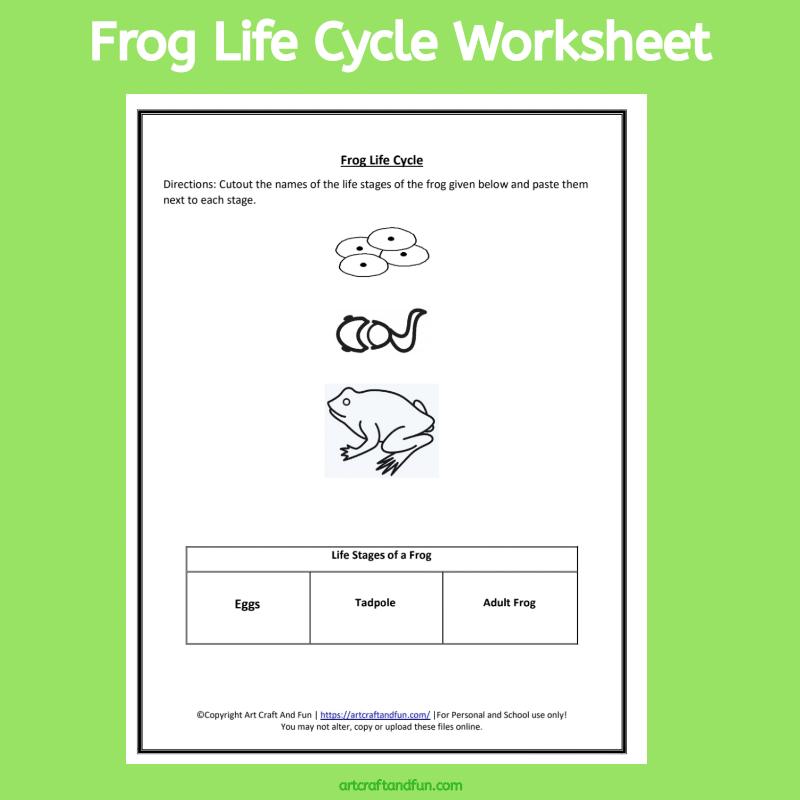 Free Printable Frog Life Cycle Worksheet #froglifecycleworksheet #animallifecycleworksheets #Freeprintables #freefroglifecycleworksheet