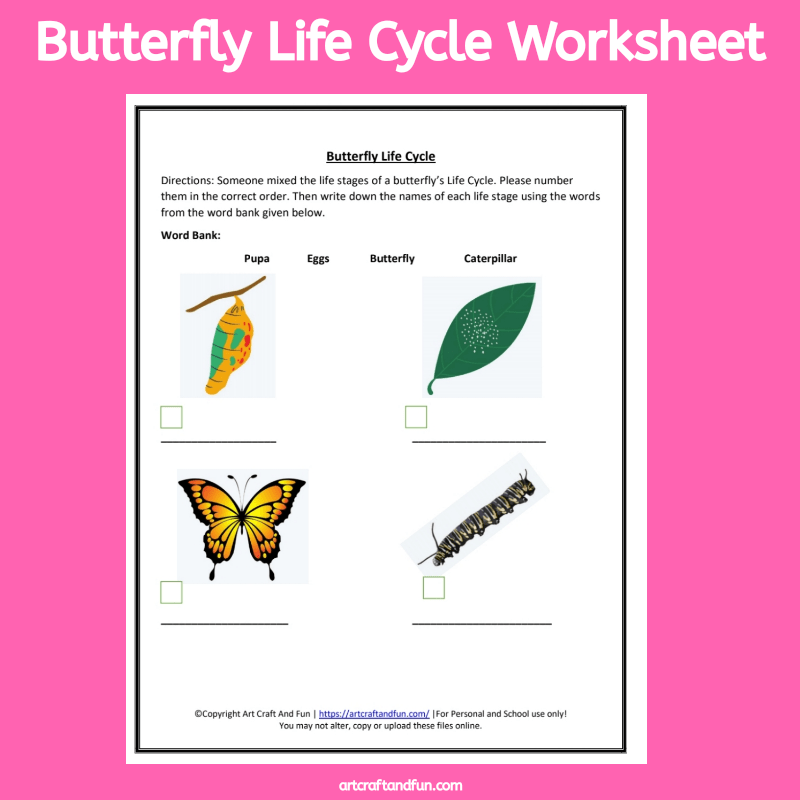 Free Printable Butterfly Life Cycle Worksheet. #freeworksheet #freeprintable #freeanimallifecycleworksheets #animallifecycle #butterflylifecycleworksheet