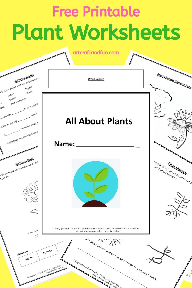 Free Printable Plant Worksheets