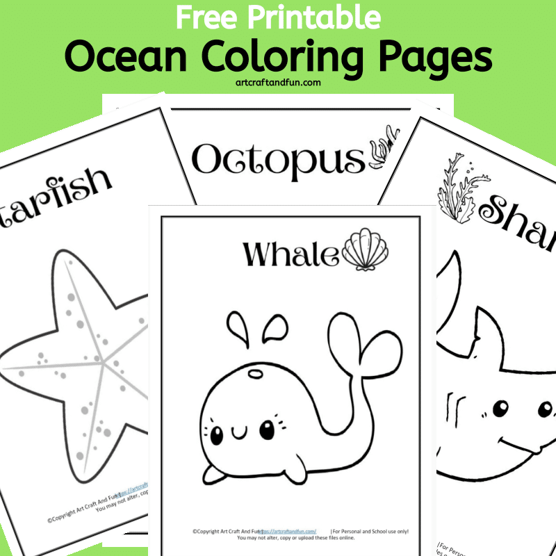 - Free Printable Ocean And Sea Animal Coloring Pages For Kids
