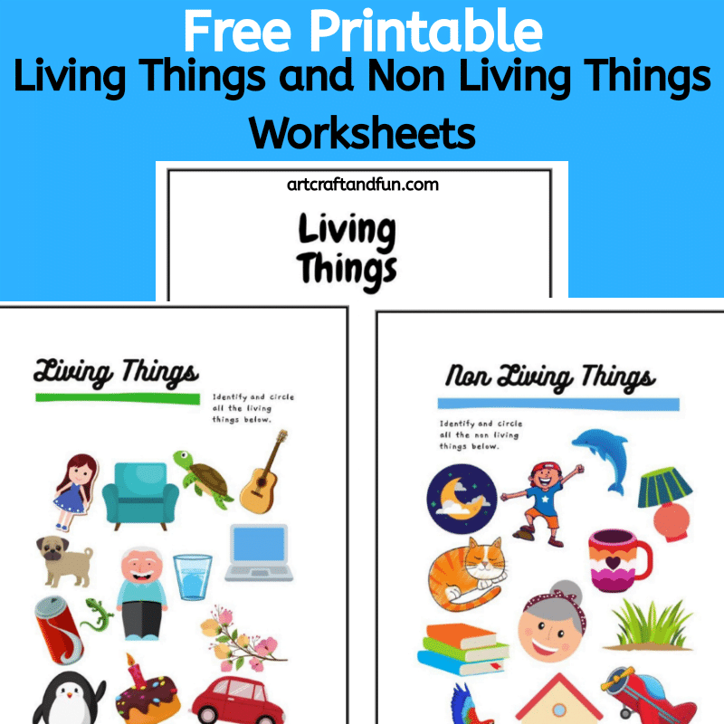 Free Printable Living Things and Non Living Things Worksheets