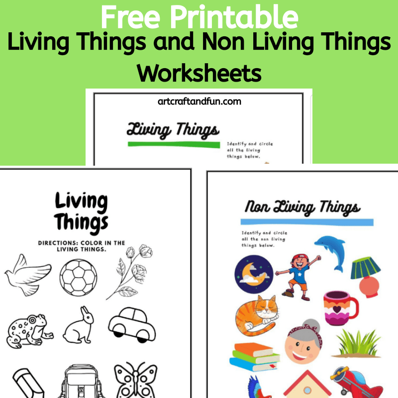 Grab this set of free printable Living things and Non Living things worksheets set today! This fun and colorful worksheet set is sure to make any kid happy. #freeprintables #freeworksheets #freelivingthingworksheet #freenonlivinthingworksheet #freelivingthingandnonlivingthingworksheets