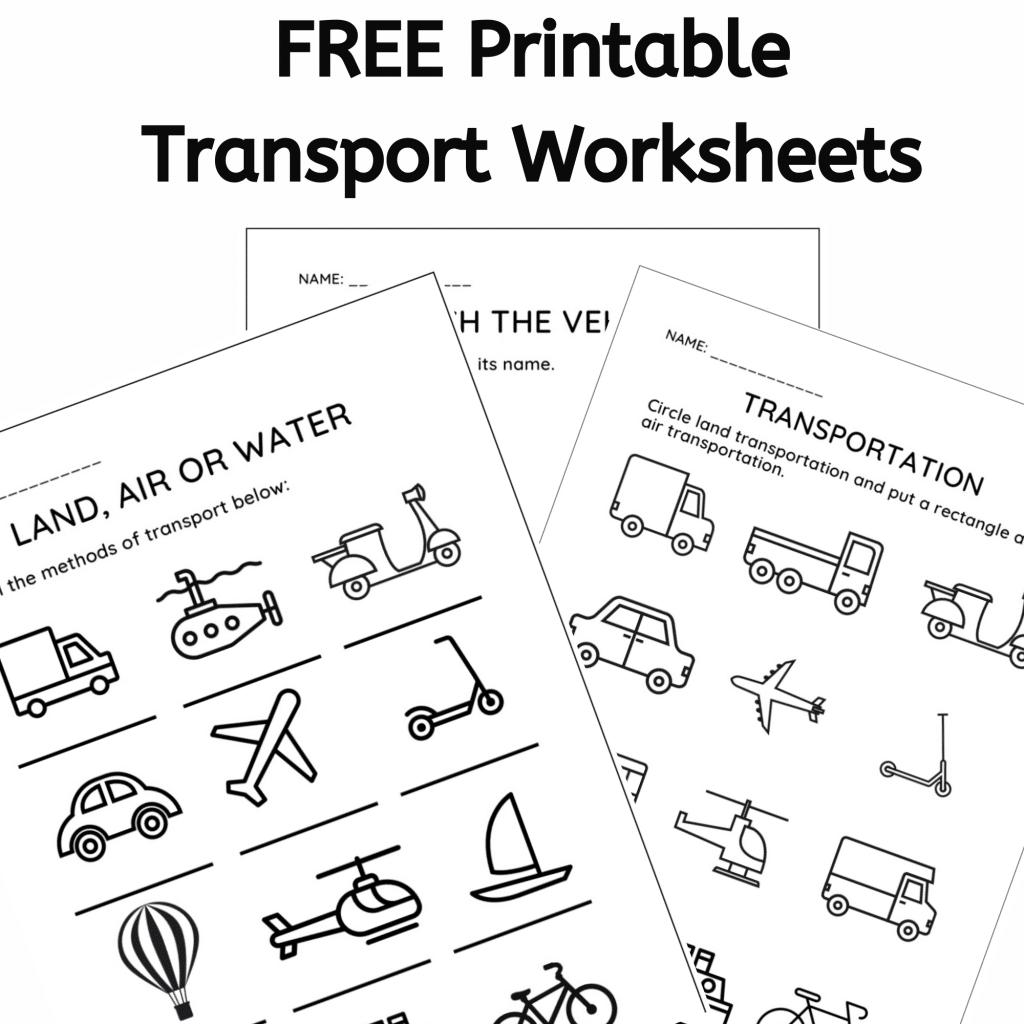 Transport Worksheets